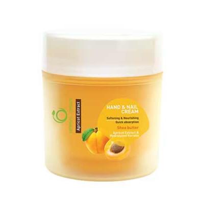 کرم دست و ناخن شون مدل Apricot Extract حجم 150 میلی لیتر Schon Apricot Extract Hand And Nail Cream 150ml