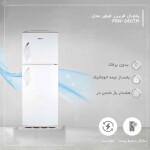 یخچال فریزر فیلور مدل RPN-COL-016 Philver RPN-COL-016 Refrigerator